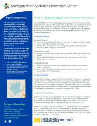 Project Factsheet – YVPC Multi-Level Approach to Youth Violence Prevention